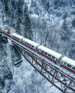 borjomi train